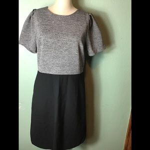 Loft black/gray back zip dress size 12